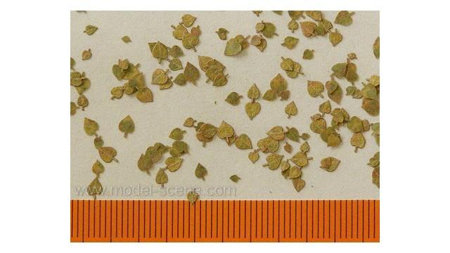 Linden - Extra colours, autumn
