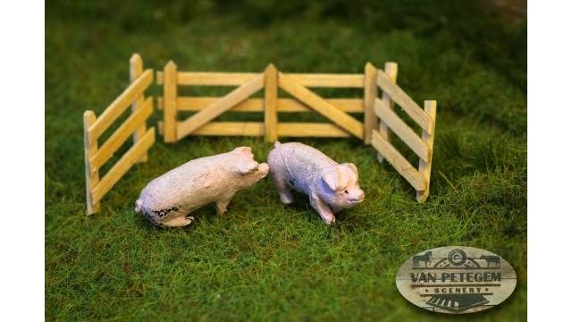 VPS - Nederlandse landvarkens 2 stuks