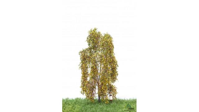 Berk, 12-16 cm, herfst, geschikt voor H0/TT